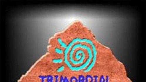 Trimordial Studio Las Vegas black logo