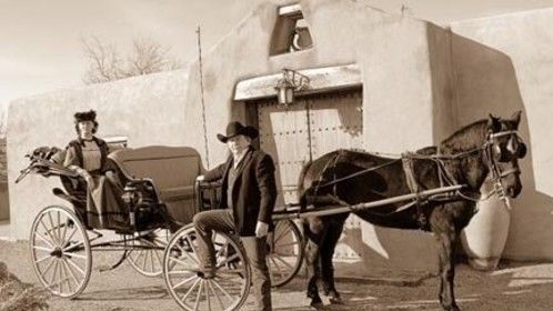 Steve's Horse and Carriage