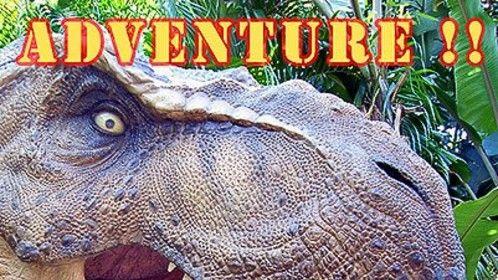 Have adventures...