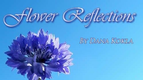 What does your favourite flower say about you?  A book of Flowerscopes