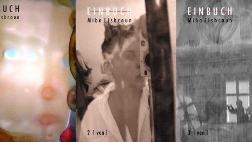 Worlds first transmedia book by © Miba Eisbraun 2012 . SOME COVERS http://mibaeisbraun.com/
