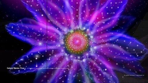 Galaxy Flower Flow 2012