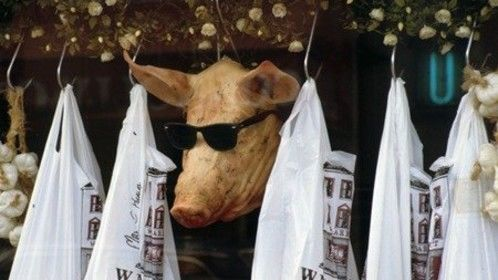 pig's head Ireland