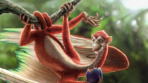 Niddler is a multi-hued monkey bird from the planet Mer. A re-imagined character from The Pirates of Dark Water.