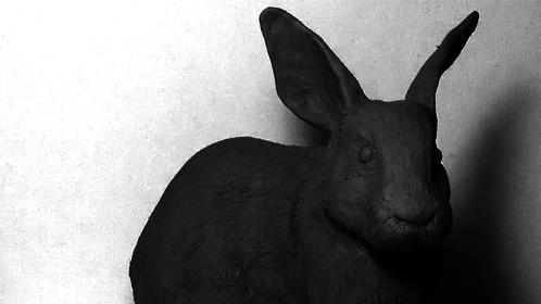 Rabbit sculpt