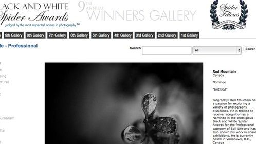 I'm thrilled to share with you that I've received recognition as a Nominee in the prestigious 9th Annual Black and White Spider Awards for the Professional category of Still Life. http://cnw.ca/xqAXr http://bit.ly/1AyCuPh