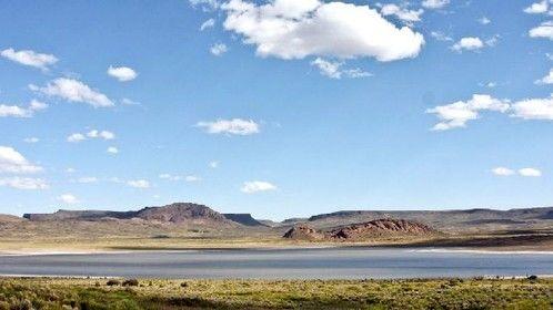 Monte, patagonia norte