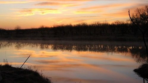 The view on my morning walk on my friends' farm and orchard in eastern Kansas.