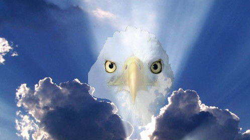 "The photo for my screenplay ""Voice of the Eagle"""