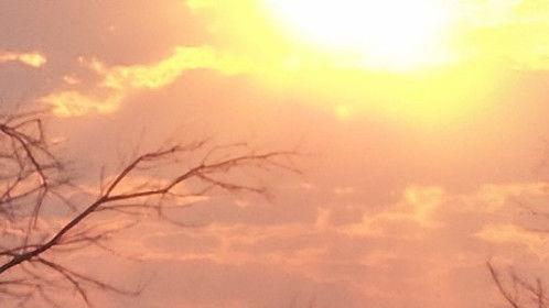 a beautiful Pilot Range sunrise!