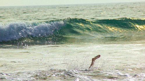 Foot in water