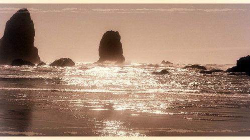 Pacific Beach beauty
