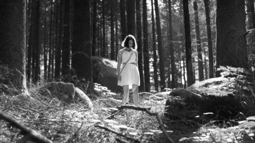 «A Floresta das Almas Perdidas» (The Forest of the Lost Souls) (2016, feature film)