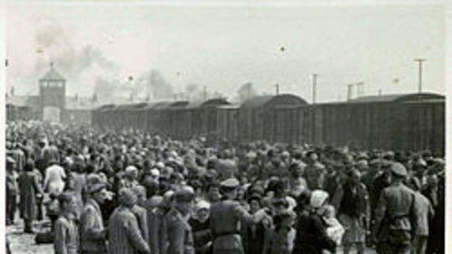 Hungarian Jews loaded up in German Box cars deported to the death camps in Germany.