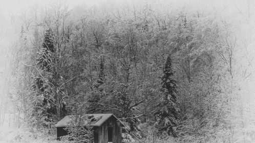 Ole Shed, Winter