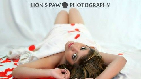 Lion's Paw Photography