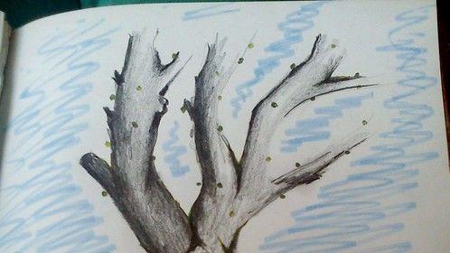 Mixed art - pencil ft indian ink brush