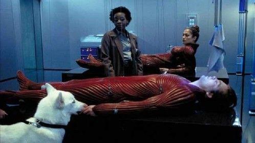 The Cell (2000)  Dir: Tarsem Singh Stars: Jennifer Lopez, Vince Vaughn, Vincent Dâ
