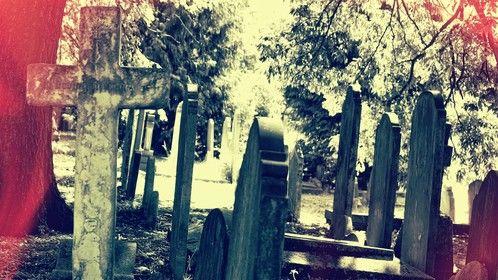 Brompton Cemetery, London.
