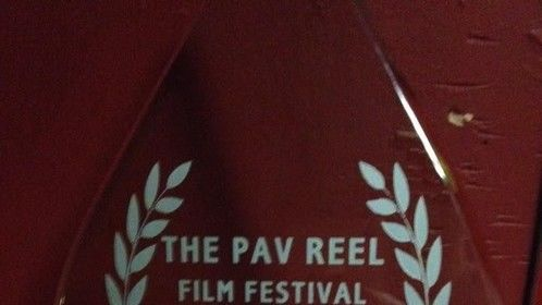 "Best Actress Award at the Pav Reel Film Festival Cork 2015, for the film ""Container""  directed by Baz David"