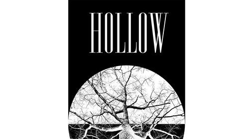 New album HOLLOW out 25th August 2015 from The Trevor Sewell Band