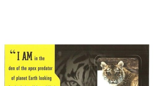 Nat Geo ad featuring Mark Stouffer's Emmy Award-winning Siberian Tiger production in Far East, Russia - TIGERS OF THE SNOW.