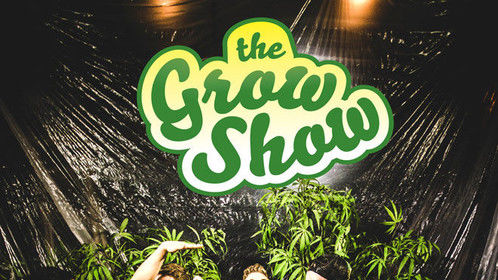 The Grow Show, a workplace comedy webseries set in a grow op.