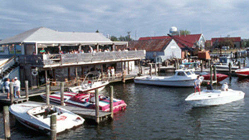 Dockside Dining - Reality Television Series.