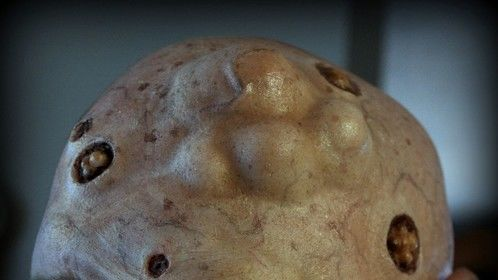 "Prosthetic mutant makeup, for ""Grey Matter"" a short film"