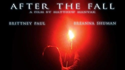 "Official poster for ""After the Fall"""