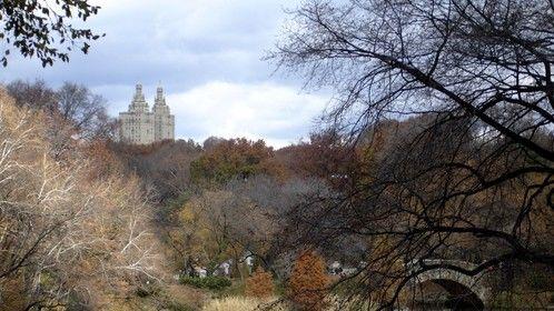 Central Park, 2011