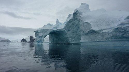 Antartica (Photograph by RD Cervo, Copyright 2010)