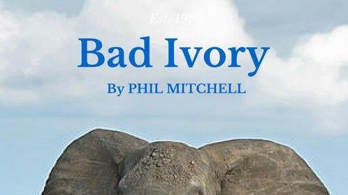 Bad Ivory. (A work in progress).