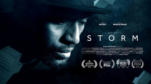 "Original ""Quiet Storm: The Ron Artest"" movie poster"