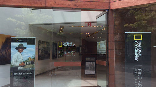 Visiting the National Geographic Fine Arts Gallery in NYC. With plenty of collections displayed throught this awesome space on Broadway, you can find amazing work from photographers like Reiko Takahashi, James Stanfield, Melissa Farlow and many others.  Such an amazing experience for amateurs and pro photographers to inspire and contemplate the real and authentic art of lifestyle, wild life and street photography.  https://www.natgeofineart.com/