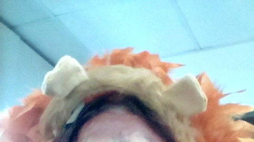 LION QUEEN -- Animal Day