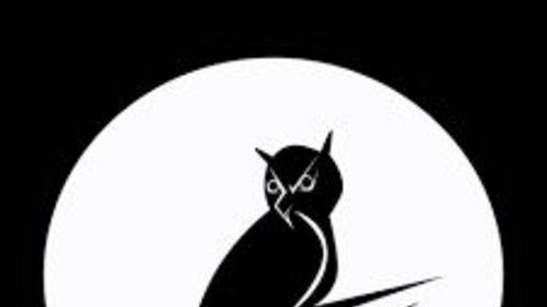The Night Owl Chronicles logo