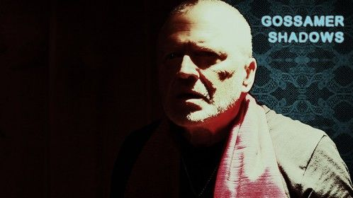 Gossamer Shadows