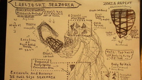 Seazoria Dragon Discovery. Field Research Examination and Identification.