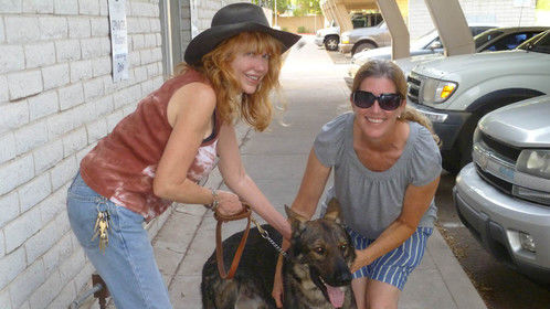 Linda picking up her new rescued dog 'Brave' (Short for Braveheart:), Phoenix, August 2013