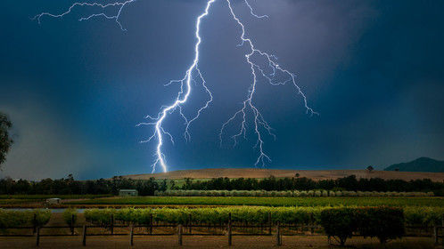 Lightning over Vineyards