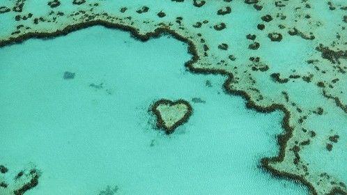 Aerial Heart Reef