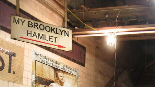 Brenda Adelman's one-woman show, My Brooklyn Hamlet