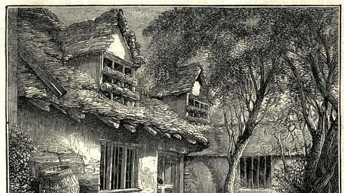 Hermit James's main living area with bars and tree trunks on windows