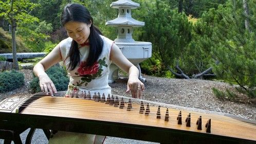 Guzheng (an ancient Chinese instrument) Music Performance