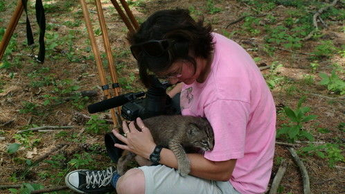 Time flies, this was 2007 and I was filming a very cute and curious bobcat kitten at the Maine WIldlife Park.