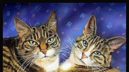 """14 x 16 """" pastel portrait"""