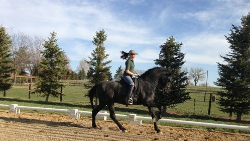Riding Aston, PRE Stallion at Mira Vista Ranch