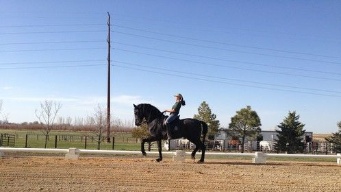 Riding Aston, PRE Stallion at Mira Vista Ranch Position just a little far back... But a beautiful Passage.