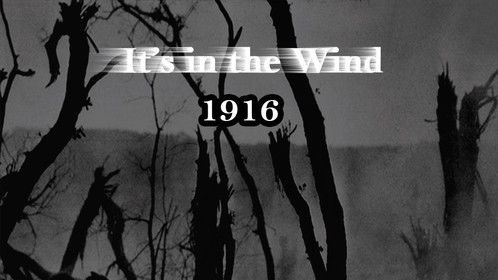 It's in the wind